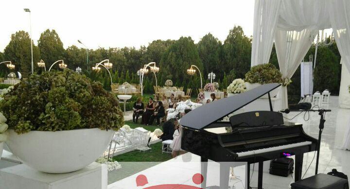 باغ عروسی مختلط